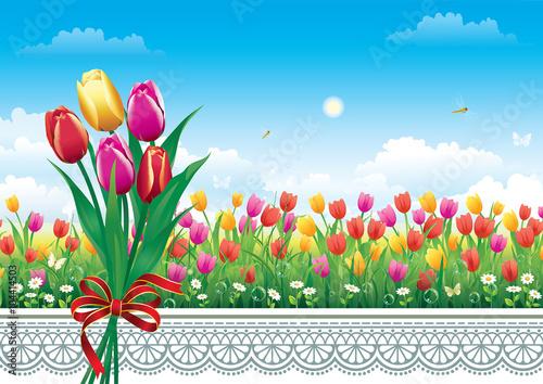 Obraz na plátne Card with tulips