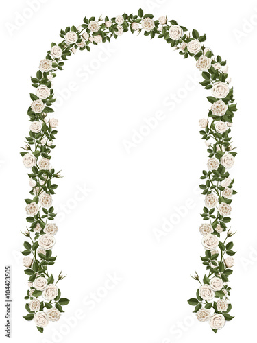 Arch of white climbing roses Wallpaper Mural