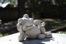 Relaxing Frog Statue Concrete ...