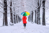 Girl with colourful umbrella walking on the path and row trees.