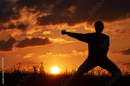 Poster Vechtsport Man practicing karate on the grassy horizon at sunset. A blow with the fist, Uraken Uchi. Art of self-defense. Silhouette on a background of dramatic clouds at sunset.