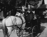 Gentlemen driving carriage with horse hitched backwards  - 104449902
