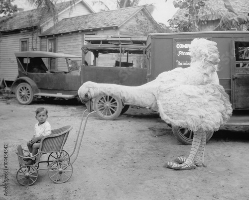 Fototapeta Fake ostrich pushing boy in stroller