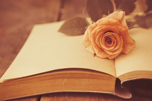 Abstract Rose Flower On Book