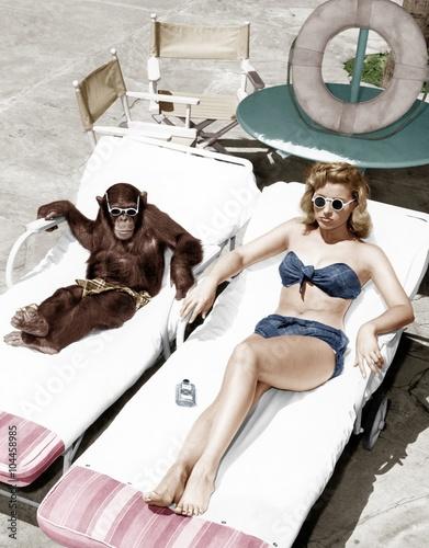 Carta da parati Chimpanzee and a woman sunbathing