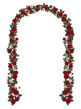 Arch Of Red Climbing Roses. Fl...