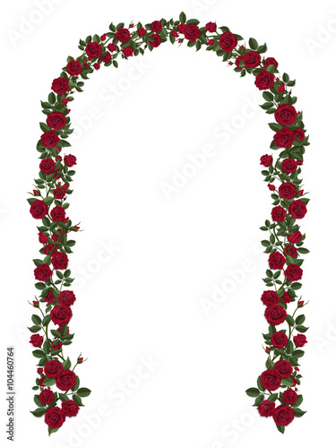 Arch of red climbing roses Wallpaper Mural