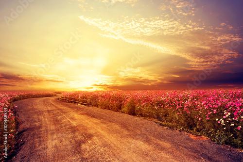 kwietny-krajobraz-podczas-wschodu-slonca