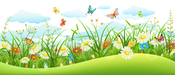 Naklejka Summer landscape banner with meadow flowers, grass and butterflies