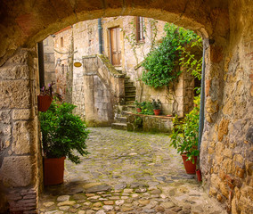 FototapetaNarrow street of medieval tuff city Sorano with arch, green plants and cobblestone, travel Italy background