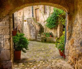 Fototapeta Narrow street of medieval tuff city Sorano with arch, green plants and cobblestone, travel Italy background