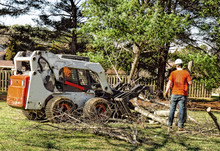 Professional Landscapers Removing Branches And Limbs Off Large Silver Maple Tree In Preparation For Its Removal.  Machinery Used.