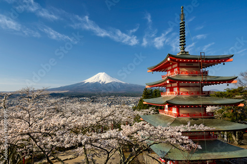 Photo Stands Japan Mount Fuji with pagoda and cherry trees, Japan