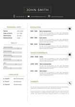 Luxury Personal Vector Resume ...