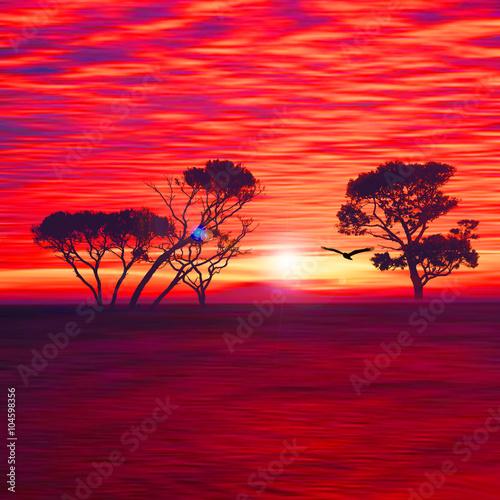 Poster Bordeaux Beautiful colorful natural landscape