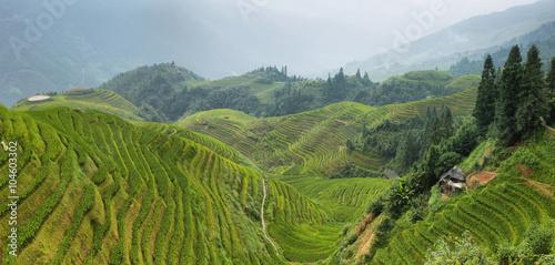 Foto auf Gartenposter Reisfelder Views of green Longji terraced fields