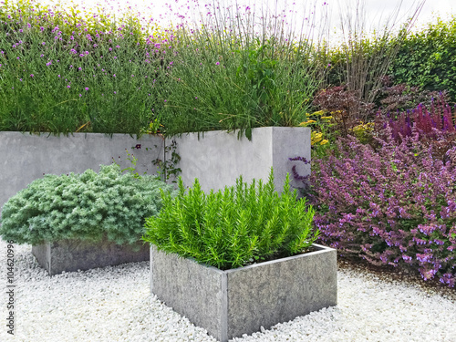Stampa su Tela Beautiful garden with contemporary design