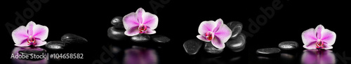 Akustikstoff - Horizontal panorama with pink orchids and zen stones on black ba