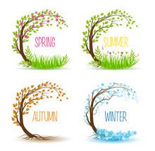 Vector Seasonal Tree