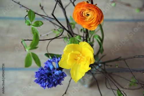 Spring bunch with fresh blue hyacinth, yellow tulip, orange ranunculus flowers on wooden background
