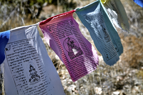 Vászonkép Buddhist prayer flags hanging from tree to tree blowing in the wind