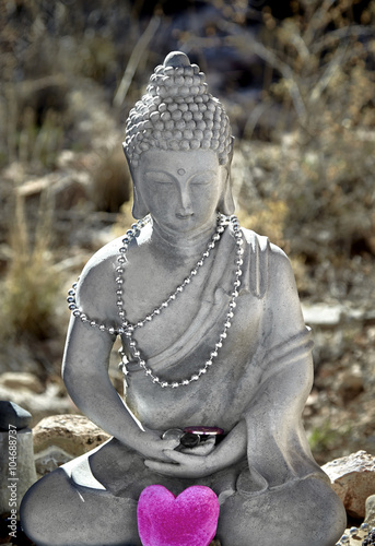 Photo  Meditating Buddha