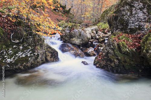 Autunno , una cascata tra i colori