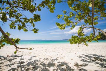 MYANMAR - JANUARY 11, 2016 : Ta Fook island is island beautiful