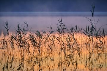 Fototapeta Saimaa lake in Finland