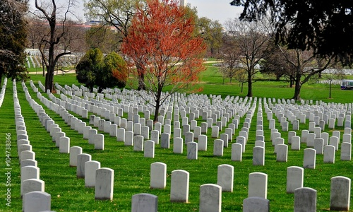 Spoed Foto op Canvas Begraafplaats Arlington, Virginia: Row upon row of military gravesites at Arlington National Cemetery *