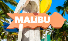 Malibu Direction Sign With Palm Trees