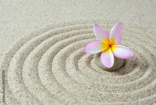 Foto op Canvas Zen zen stones with frangipani flower with sand background