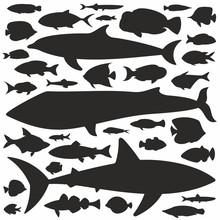 Fish Silhouette Set