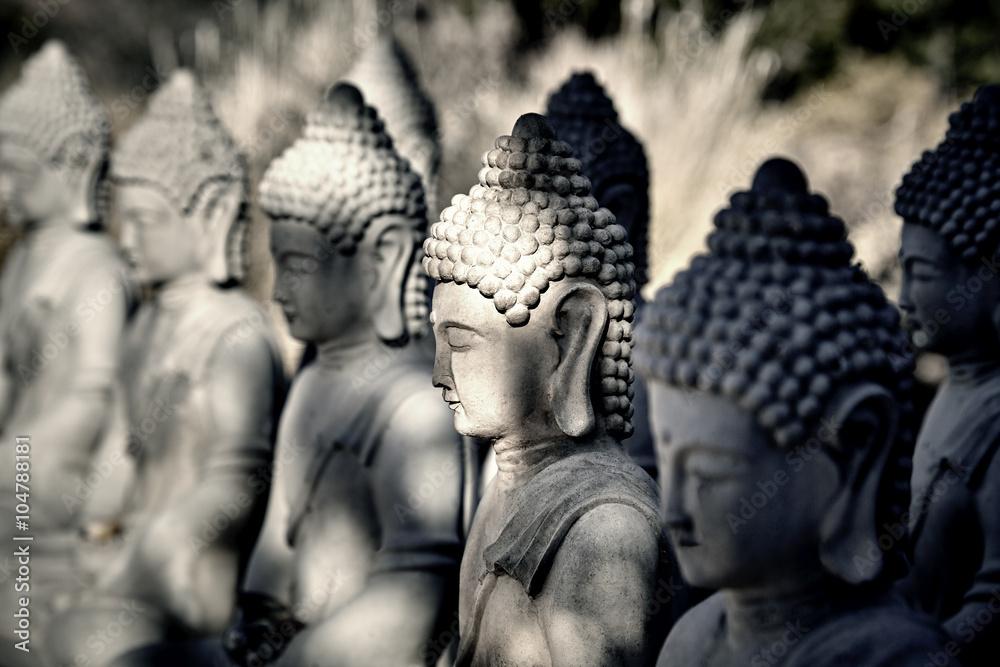 Fényképezés Meditating Buddha Statues in a Row