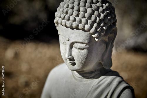 Fényképezés Budda Statue Head