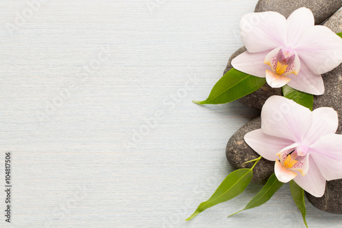 Poster Spa Orchid.