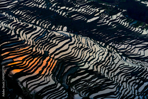 Poster Rijstvelden Rice Terraced field in water season in YuanYang, China