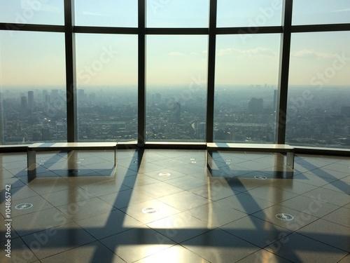 Foto op Aluminium Luchthaven tokyo city view