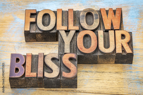 follow your bliss in wood type Canvas Print