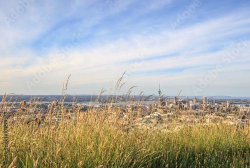 Spoed Foto op Canvas Noordzee The scenic Auckland's city view from Mount Eden.