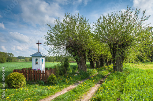 Foto op Canvas Pistache Chapel on the way to the village Mazovia Poland