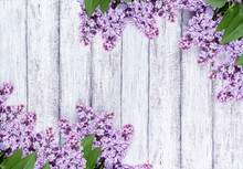 Lilac Flowers On Shabby Wooden Planks