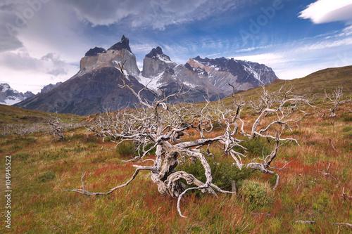fototapeta na szkło Torres del Paine National Park, Patagonia, Chile