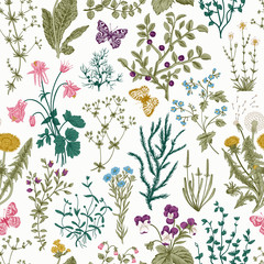 Fototapeta Skandynawski Vector vintage seamless floral pattern. Herbs and wild flowers. Botanical Illustration engraving style. Colorful