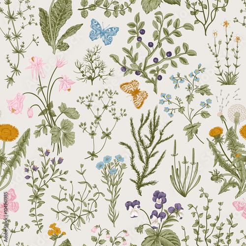 wektor-wzor-kwiatowy-wzor-ziola-i-dzikie-kwiaty-styl-grawerowania-botanicznego-kolorowy
