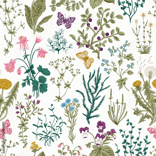 Leinwand Poster  Vector vintage seamless floral pattern
