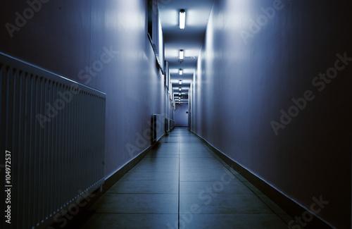 Fotografie, Tablou  Terrifying night corridor in perspective