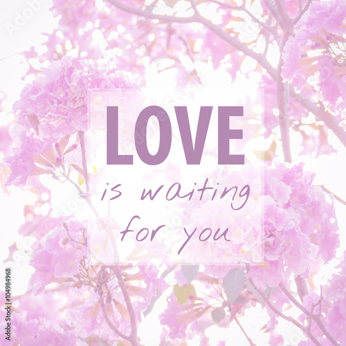 Quote About Love On Flower Backgroundlove Is Waiting For You Buy