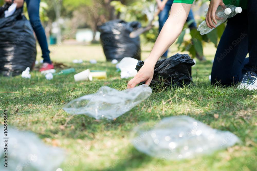 Fototapeta Cleaning meadow