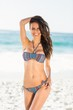 Smiling pretty brunette posing in bikini